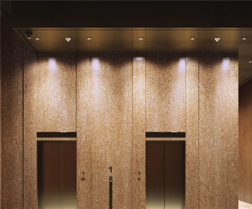 Architectural Finish Wooden Effect for Lift