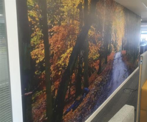 Custom one piece wallcovering for Epping Forest Council