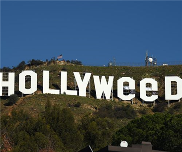 Hollywood re-envisioned into Hollyweed in a stunt by local artist