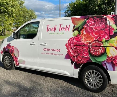 Van Graphics by Signs Express