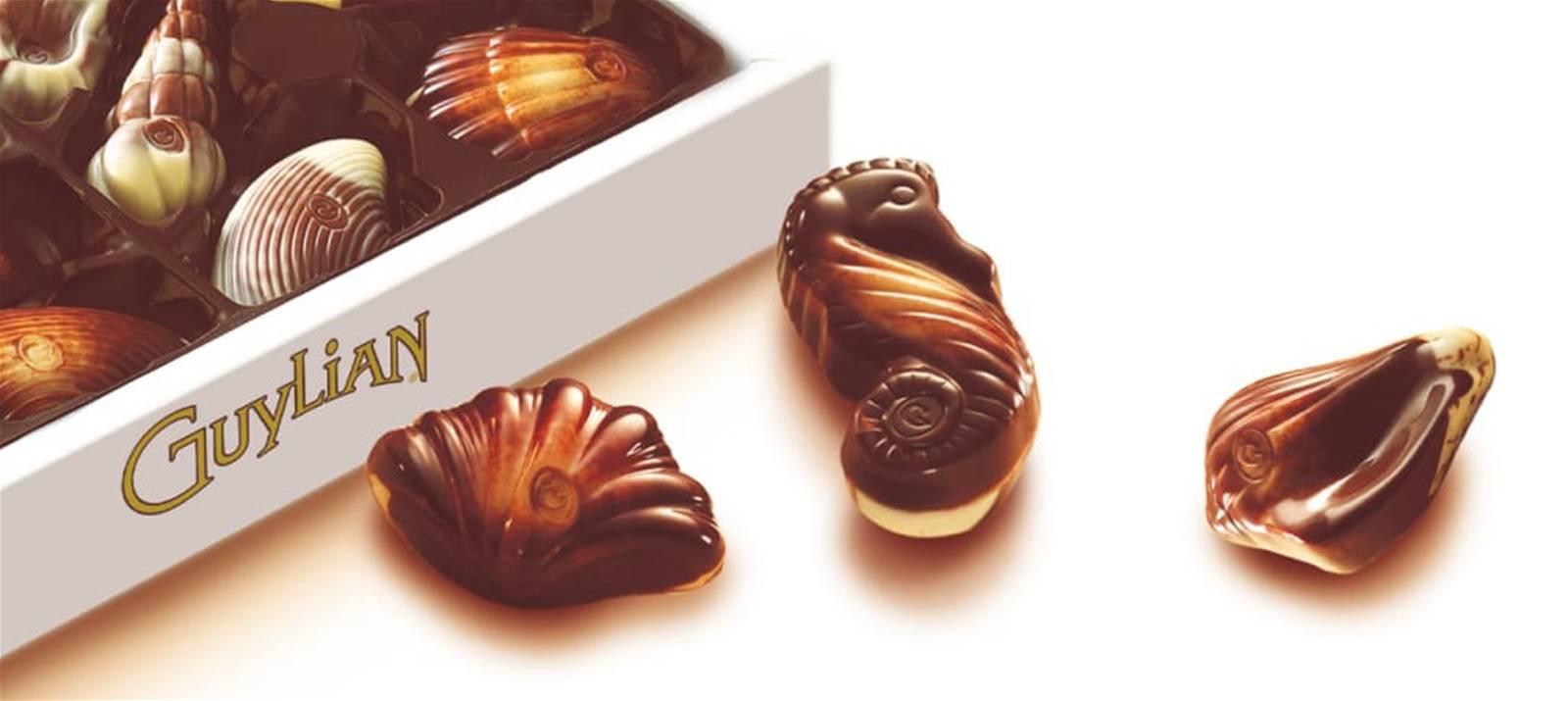 Guylian Chocolate Brand